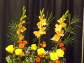 RIFGC Spring Flower Show - 2016